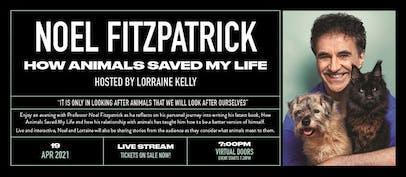 Noel Fitzpatrick announces special livestream show
